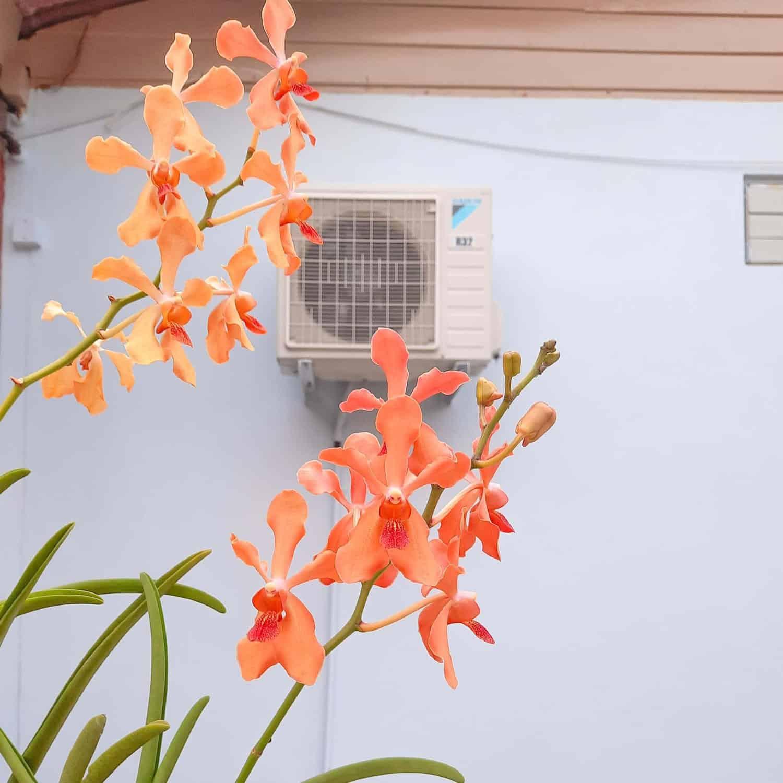 Aire acondicionado pared